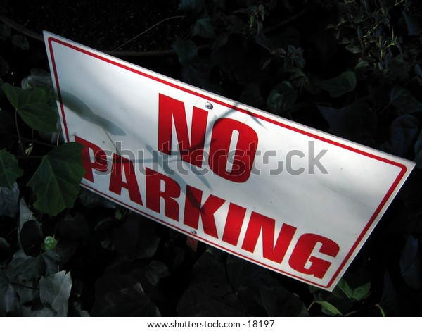 'No parking' sign placed in a potted plant.