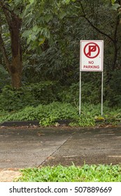No parking sign. White sign 'no parking' standing near asphalt road surrounded with green grass and trees.
