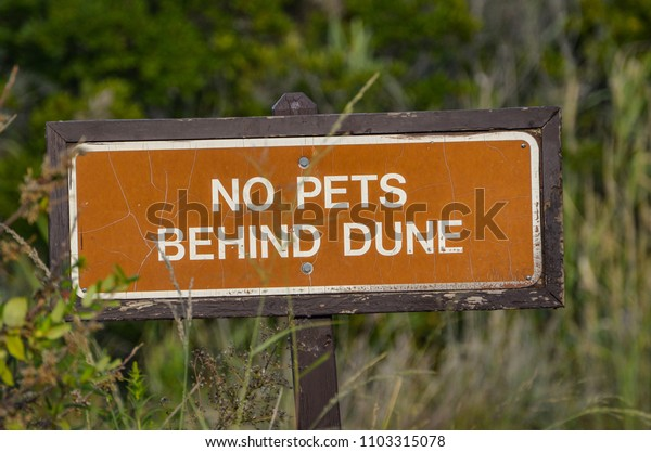 No pet behind dune sign on a pole with vegetation in the background.