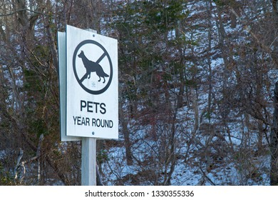 No Pets allowed year round sign posted along hiking trail at base of a snowy mountain during winter time for attention of animal owners