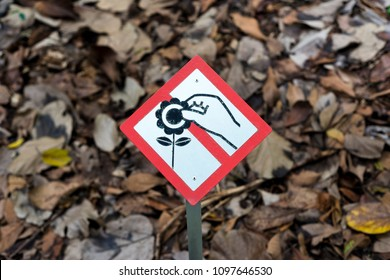 no flower picking sign images stock photos amp vectors