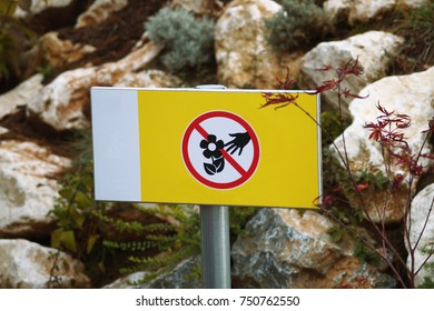 no picking flowers images stock photos amp vectors