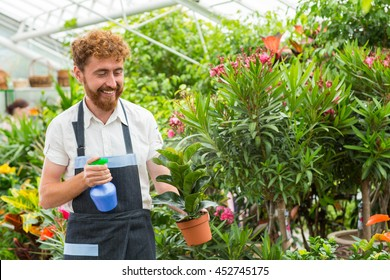 No plant is forgotten. Happy bearded man watering a potted plant working in his nursery smiling cheerfully