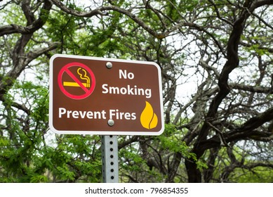 no smoking, prevent fires sign in a natural, forest setting
