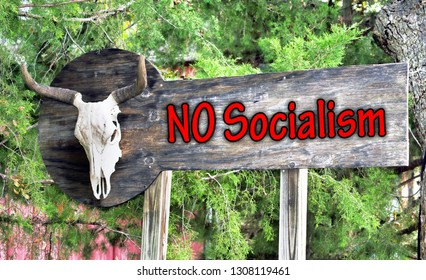 No Socialism sign on old board with cow skull.