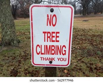 no tree climbing sign