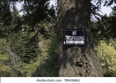 No trespassing sign on a tree as a warning