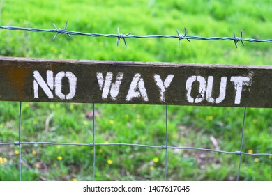 'No Way Out' sign on a countryside perimeter fence