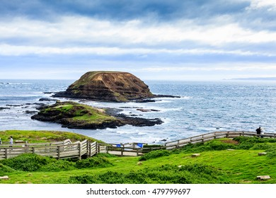 The Nobbies in Phillip Island with an clean and windy winter weather and very blue sea.