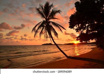 Nobody on Beach at Sunset