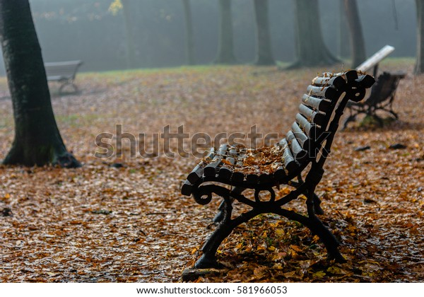 Nobody on the bench (a cold misty morning)