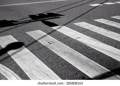 Nobody on Crosswalk in Black and white / Crosswalk
