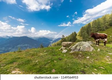 Nocky Mountains Panorama Landscape View Carinthia Austria