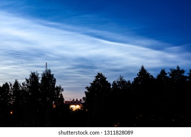 Noctilucent clouds glowing at night sky above trees