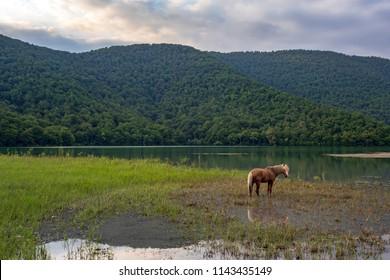 Nohur lake, Azerbaijan