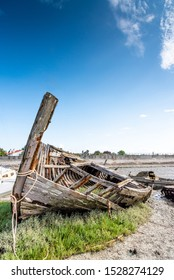 The Noirmoutier boats cemetery. The bow of the wreck of an old wooden fishing boat emerges on a bed of greenery that emerges from the mudflat at low tide
