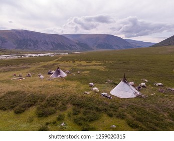 Nomad herding camp in the summer, Yamal, Russia. Shooting from the drone