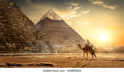 Nomad on camel near pyramids in egyptian desert