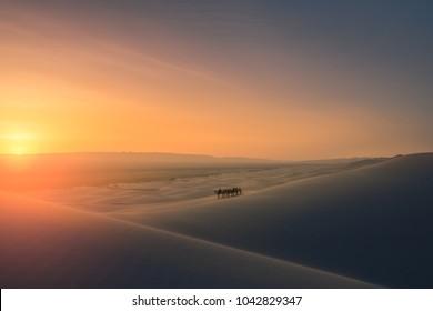Nomad on sand dunes at Gobi desert, Mongolia.