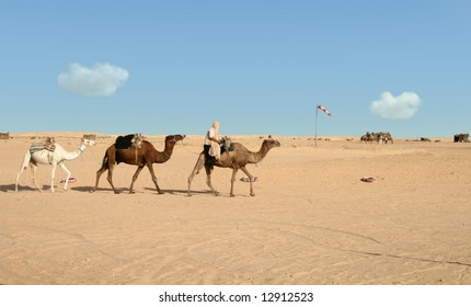 Nomad riding on first of three camels