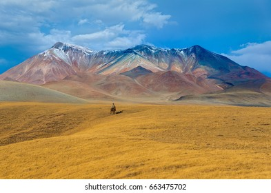 Nomadic journey in steppe of Kazakhstan