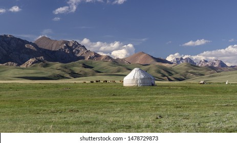 A nomadic Yurt and cattle in front of mountains at songkul lake