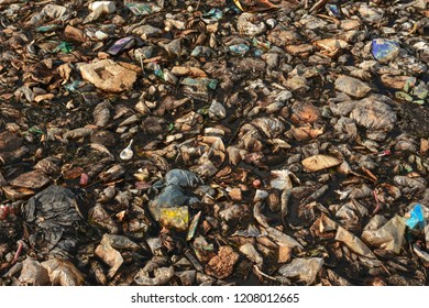 harmful effects of non biodegradable waste
