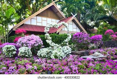 Nong Nooch Tropical Botanical Garden in Pattaya, decorative house among flowers Bougainvillea, Thailand