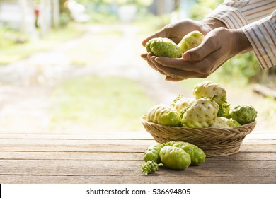 Noni fruit  and noni basket on wooden table.And noni in his hand.Zoom in