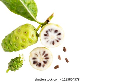 Noni fruit or Morinda Citrifolia and noni slice with seed and green leaves of the noni isolated on white blackground with copy space for text. Top view.