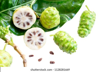 Noni fruit or Morinda Citrifolia and noni slice with seed and green leaves of the noni isolated on white blackground with copy space for text. With clipping path.