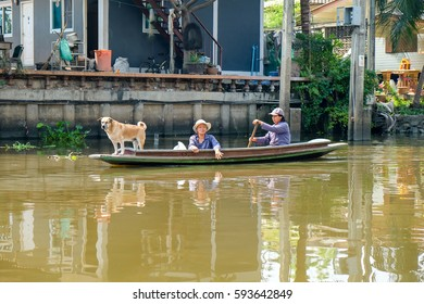 Nonthaburi, Thailand - 19 February 2017 : Unidentified 2 womens are paddle in canal and have one dog stand in the boat