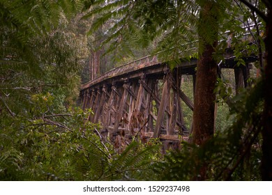 Noojee is home to one of the most impressive trestle bridges near Melbourne