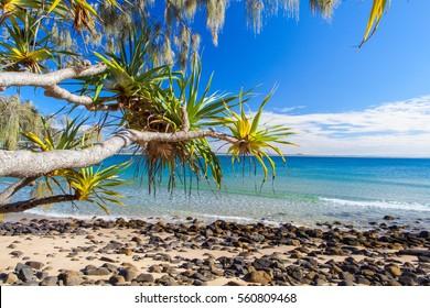Noosa National Park on Queensland's Sunshine Coast