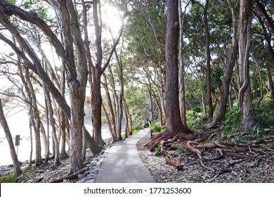 Noosa National Park, Sunshine Coast, Australia