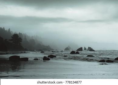 NorCal Misty Seascape