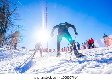 Nordic ski athlete on the track. sport photo with edit space.