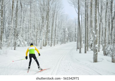 nordic ski sport photo - young athlete skate in beautiful winter forest covered by snow