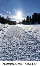Nordic ski track in Neuchatel, Switzerland.