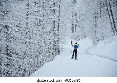 Nordic skier on the white winter forest covered by snow -  concept photo for winter olympic game in pyeongchang in 2018