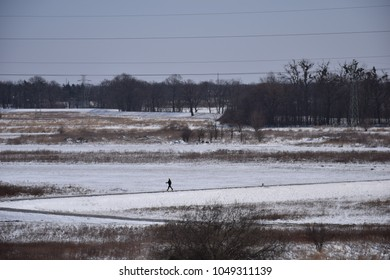 Nordic walking fan exercising on the dike in the middle of snowy fields and meadows in the winter. Fit man or woman spending time actively on free time. Cold weather warm clothing. Winter recreation