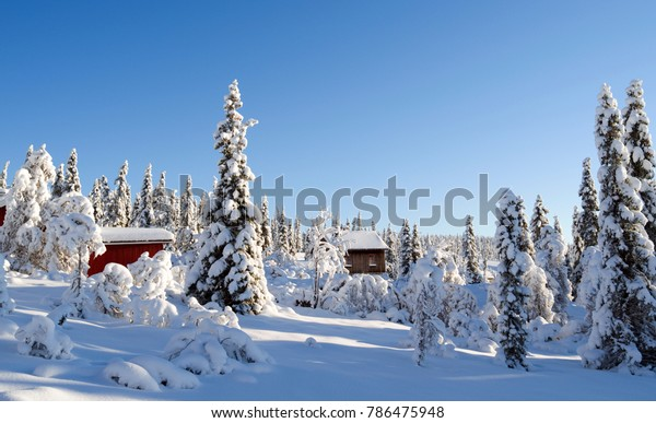 Norefjell / Norway: Dreamy winter landscape