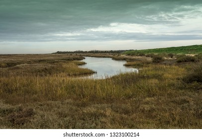 Norfolk salt marsh landscape image