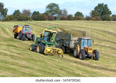 Normandie, France, october 2010.