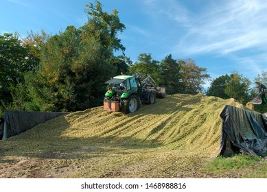 Normandie, France, october 2015.