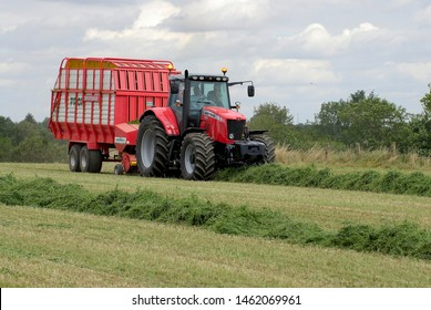 Normandy, August 2006. Early cut alfalfa haylage with a silage harvesters