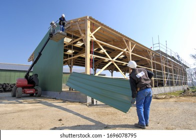 Normandy, France, April 2014. Construction of a new farm building for cows breeding with wood frame and masonry walls. Installation of the external cladding. Carpenters at work