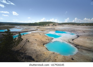 Norris Geyser Basin in geothermal area of Yellowstone National Park, Wyoming, USA