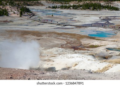 Norris Geyser Basin in Yellowstone National Park, Wyoming, USA. It is the the hottest geyser basin in Yellowstone.