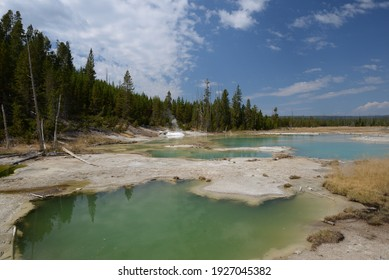 Norris Geyser Basin In Yellowstone National Park, Wyoming, USA